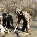 Green Timber Duck Hunting 2011-2012 Gallery -- img_3396.jpg